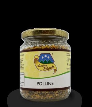 polline secco